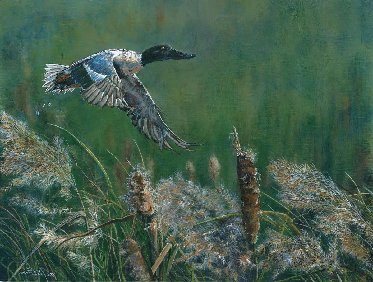 The Shoveler's Take-off   Wallhanging by Gery van der Kelen   Artists for Conservation 2018