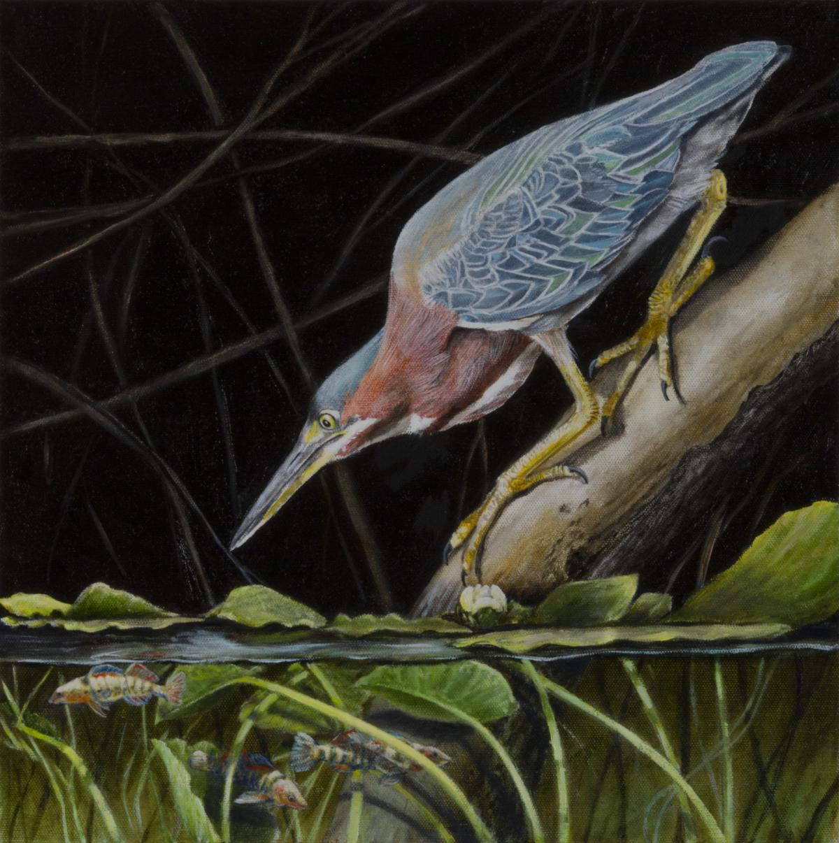 Green Heron and Rainbow Darters   Wallhanging by Rob Dreyer   Artists for Conservation 2018
