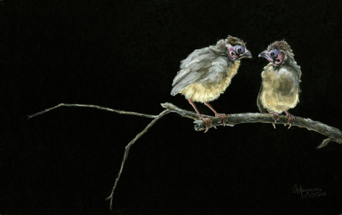 Two of a Kind   Wallhanging by Vicki Ferguson   Artists for Conservation 2018