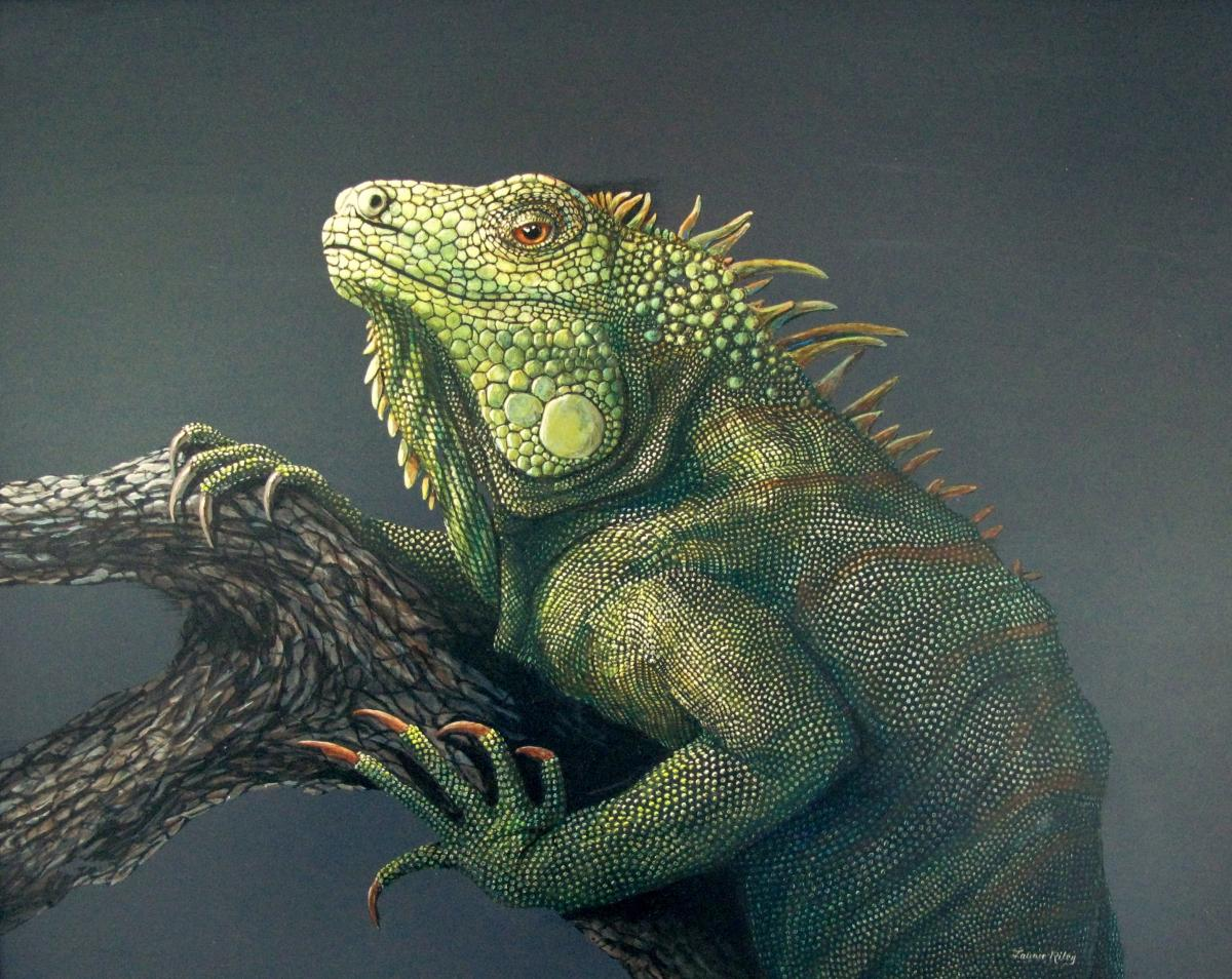 Green Iguana | Wallhanging by Laurie Riley | Artists for Conservation 2020