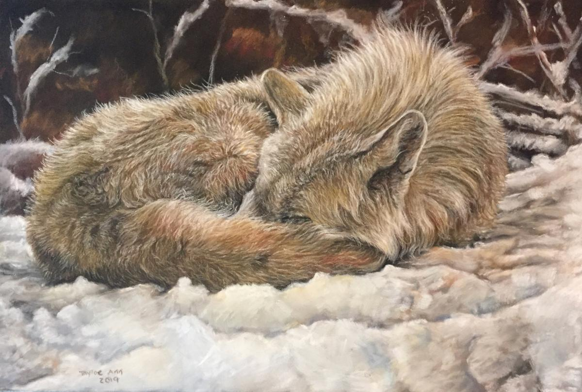 Courage Sleeps | Wallhanging by Taylor Ann | Artists for Conservation 2020