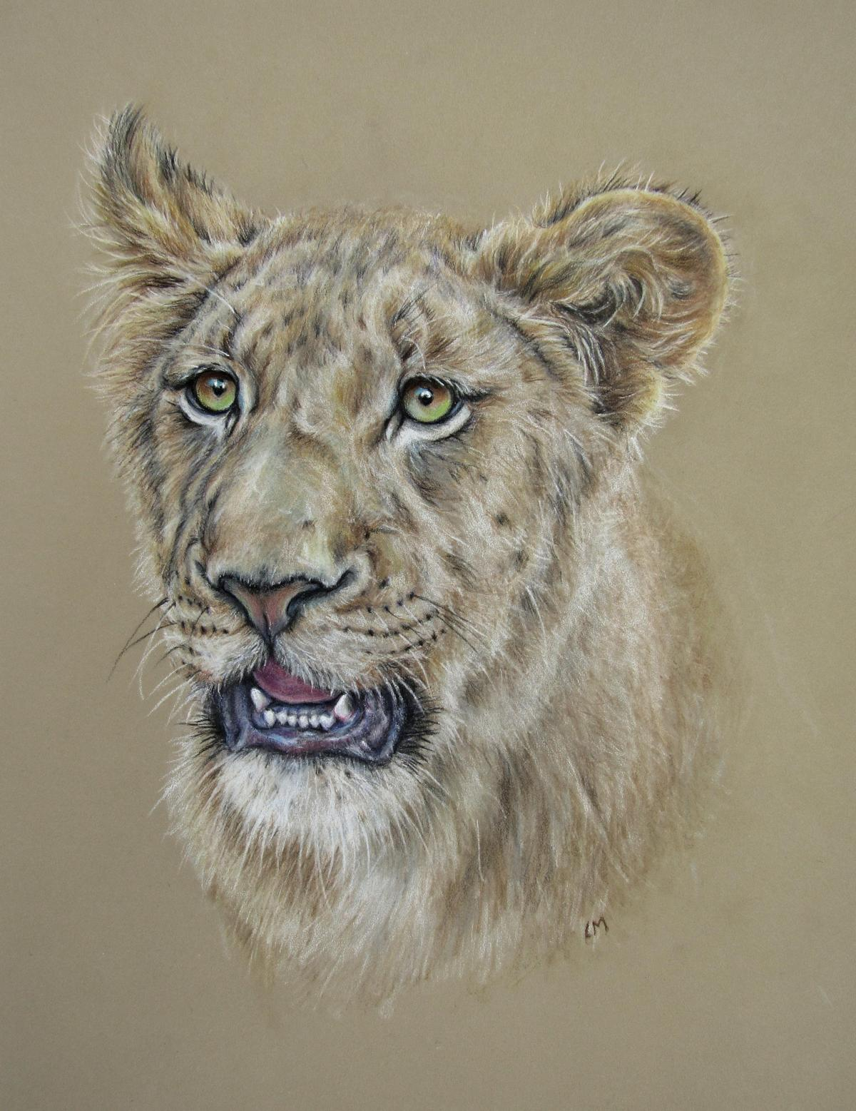 African Lioness | Wallhanging by Linda Martin | Artists for Conservation 2020