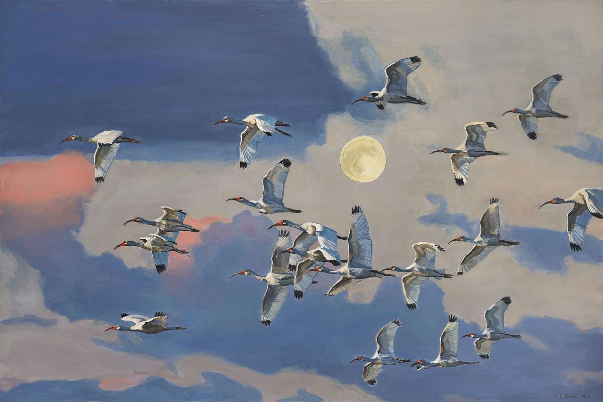 Ibis Flying Under the Moon | Wallhanging by Mary Louise O'Sullivan | Artists for Conservation 2020
