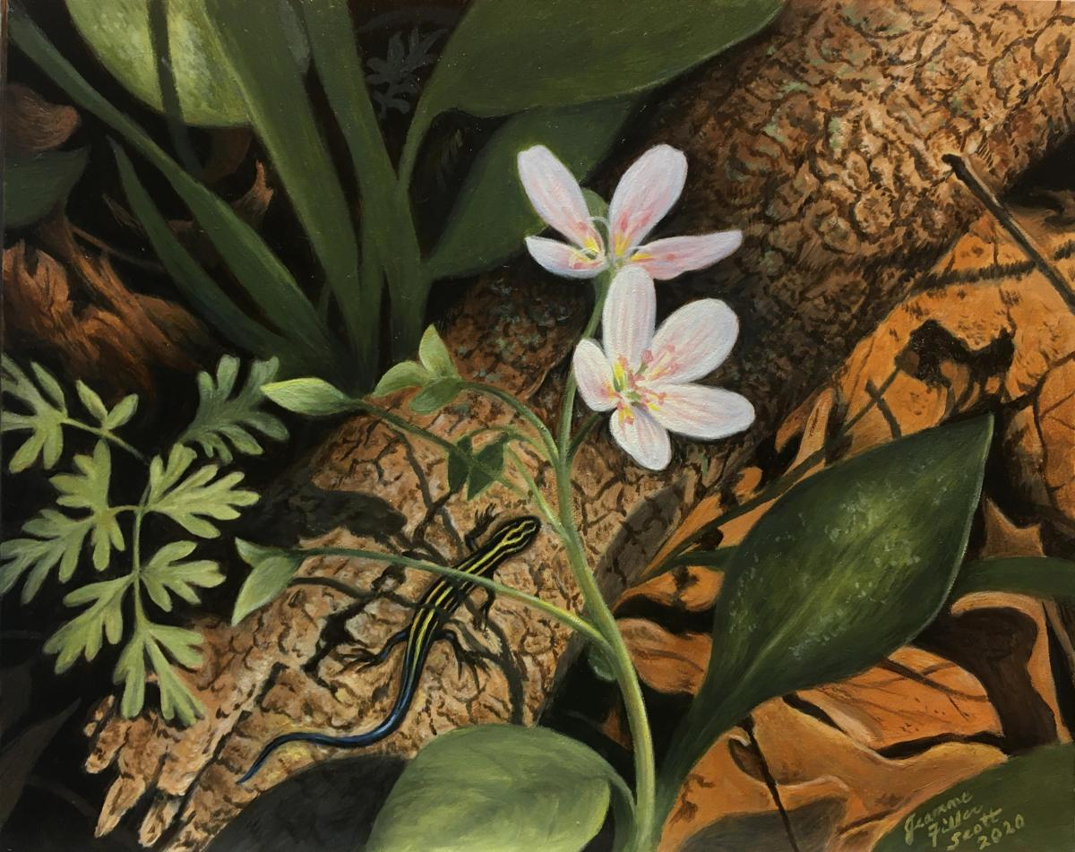 Spring Beauties and Blue-Tailed Skink | Wallhanging by Jeanne Filler Scott | Artists for Conservation 2020
