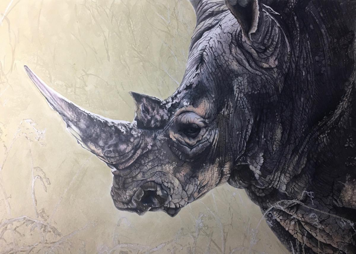 Rare Rhino | Wallhanging by Pat Jackman | Artists for Conservation 2020