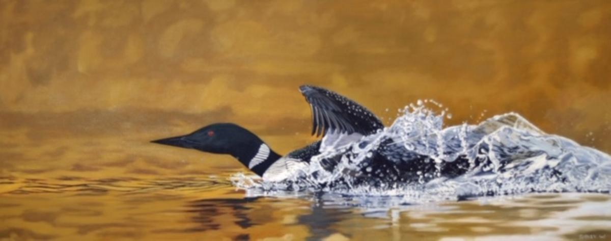 Loon Liftoff | Wallhanging by Cherie Sibley Wasyliw | Artists for Conservation 2020