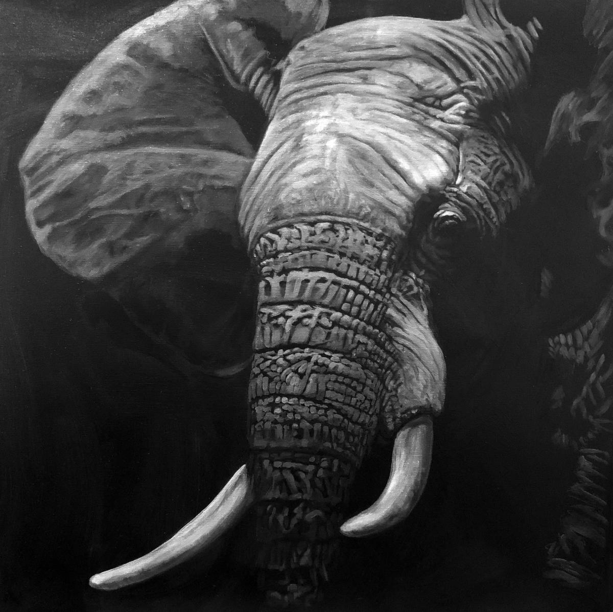Imposing Presence | Wallhanging by Deborah LaFogg Docherty | Artists for Conservation 2020