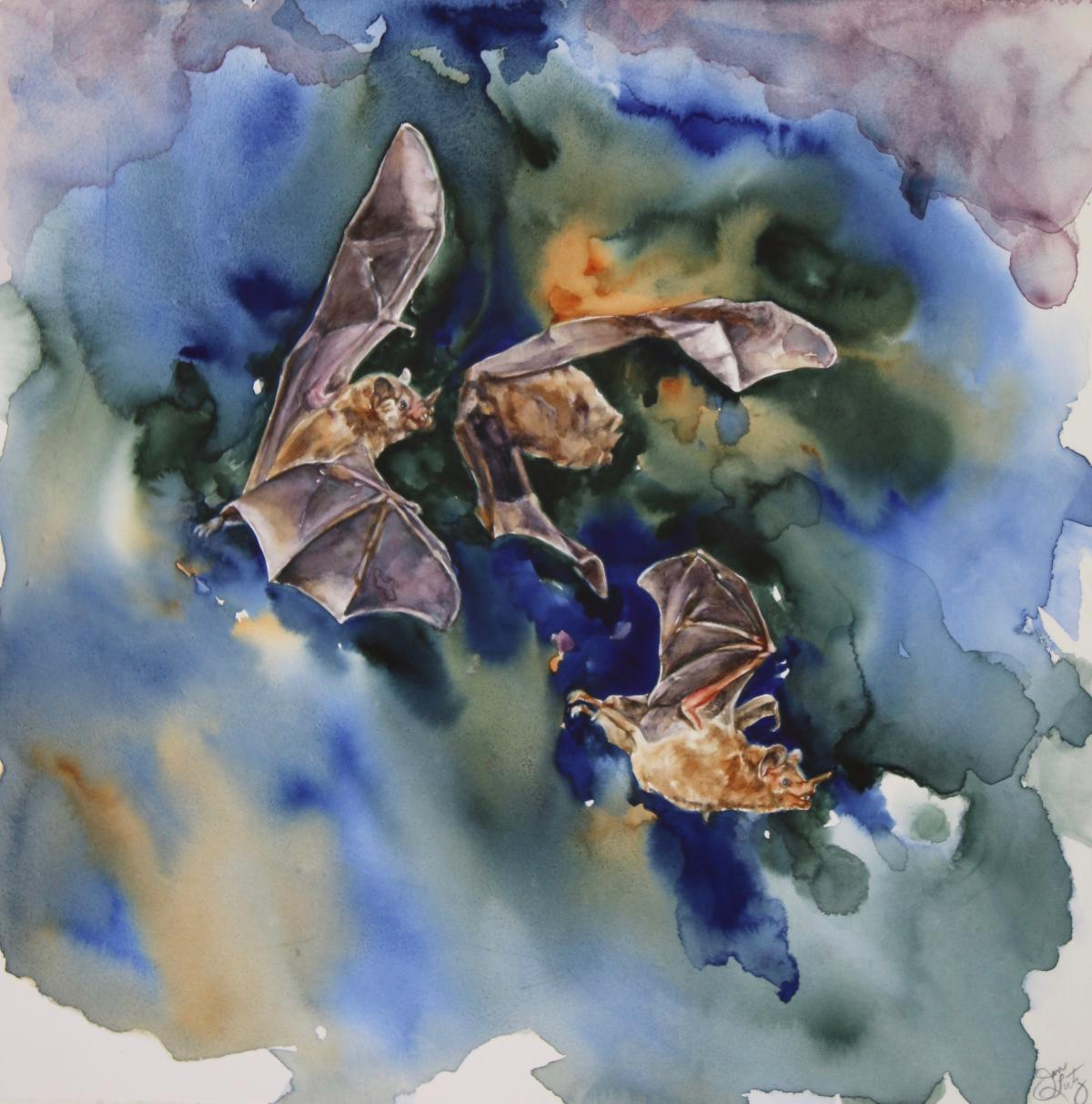 Tropical Bats | Wallhanging by Jan Lutz | Artists for Conservation 2020