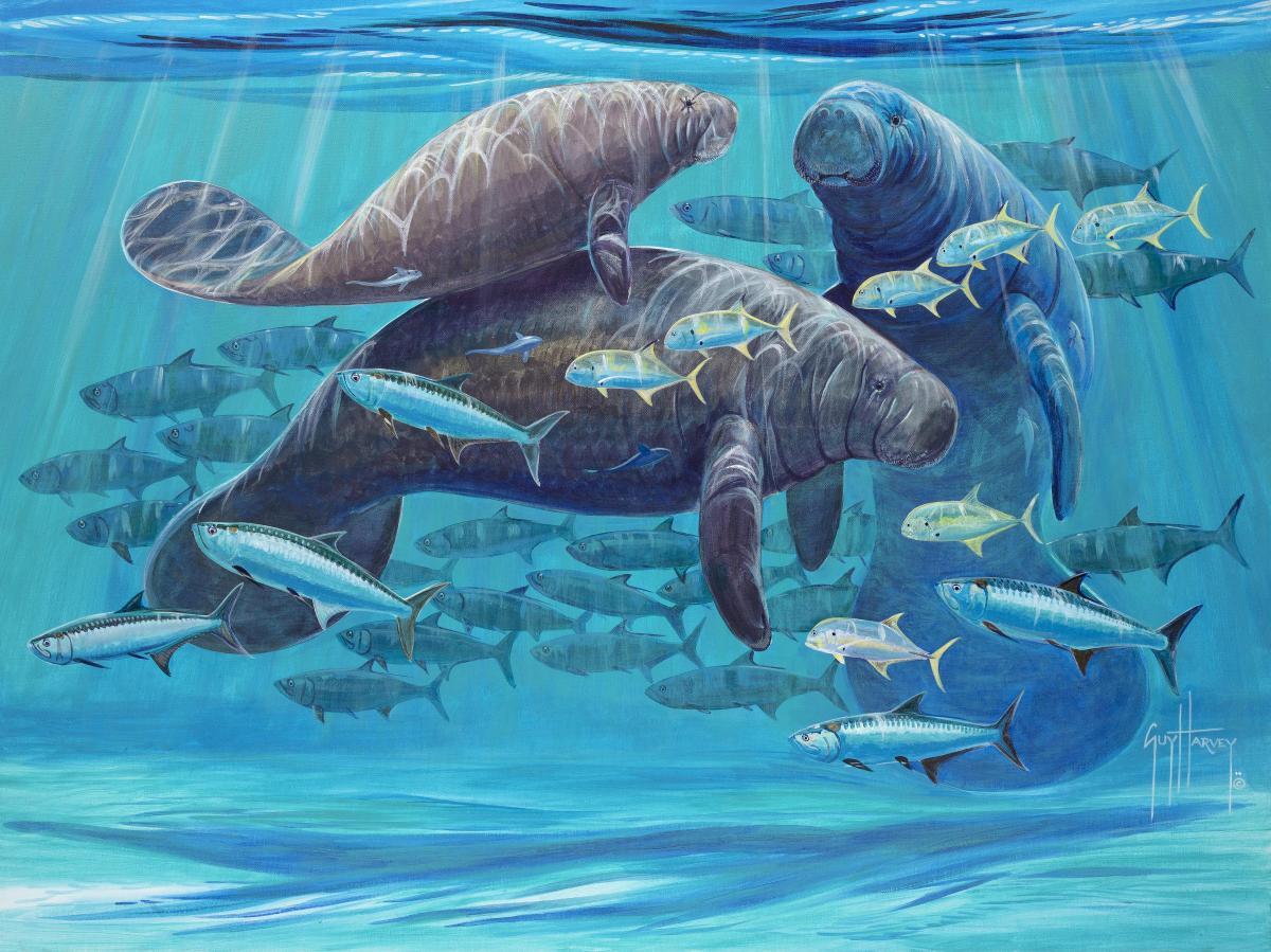 Manatee Escape | Wallhanging by Guy Harvey | Artists for Conservation 2020