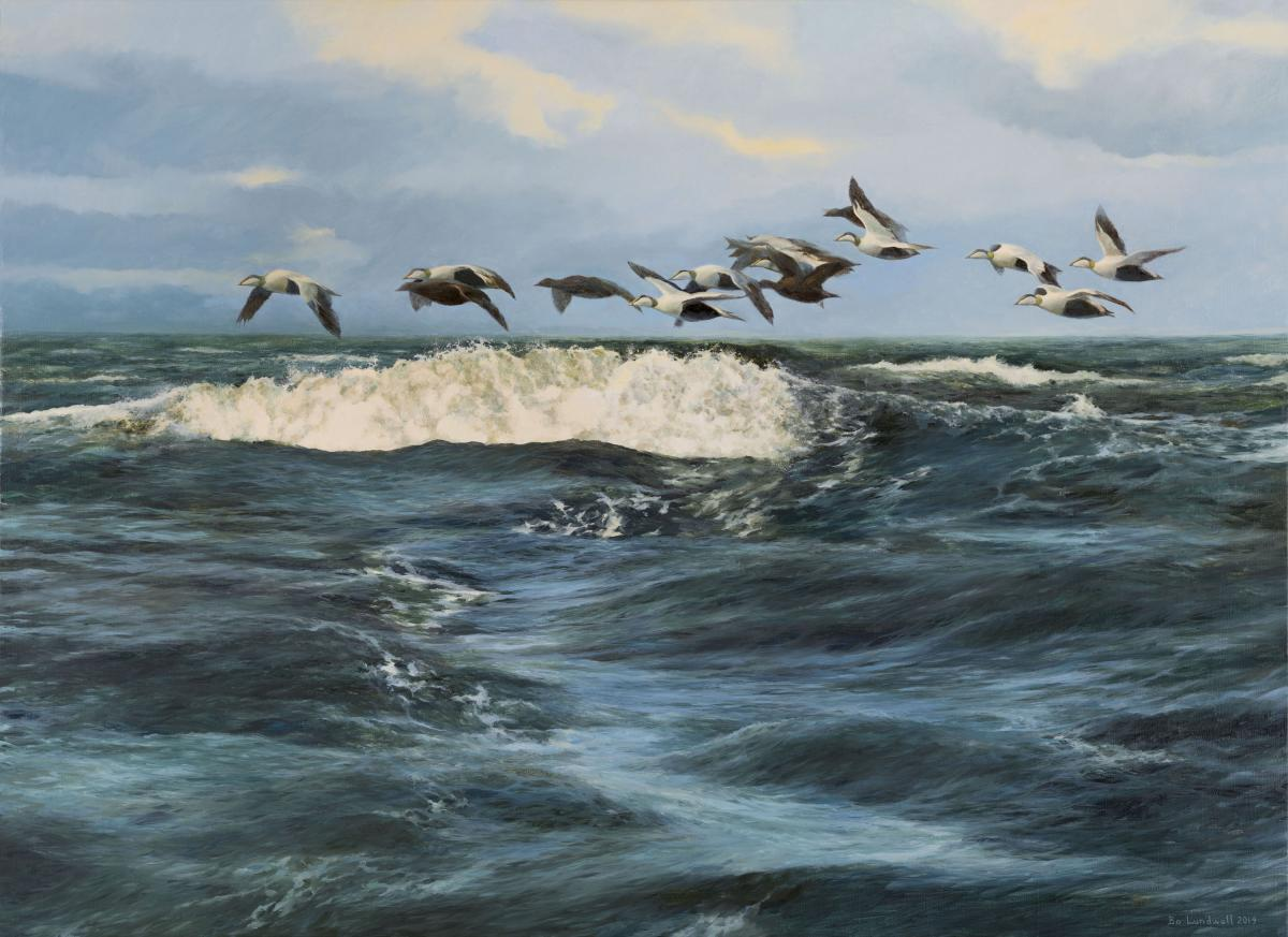 Eider | Wallhanging by Bo Lundwall | Artists for Conservation 2020
