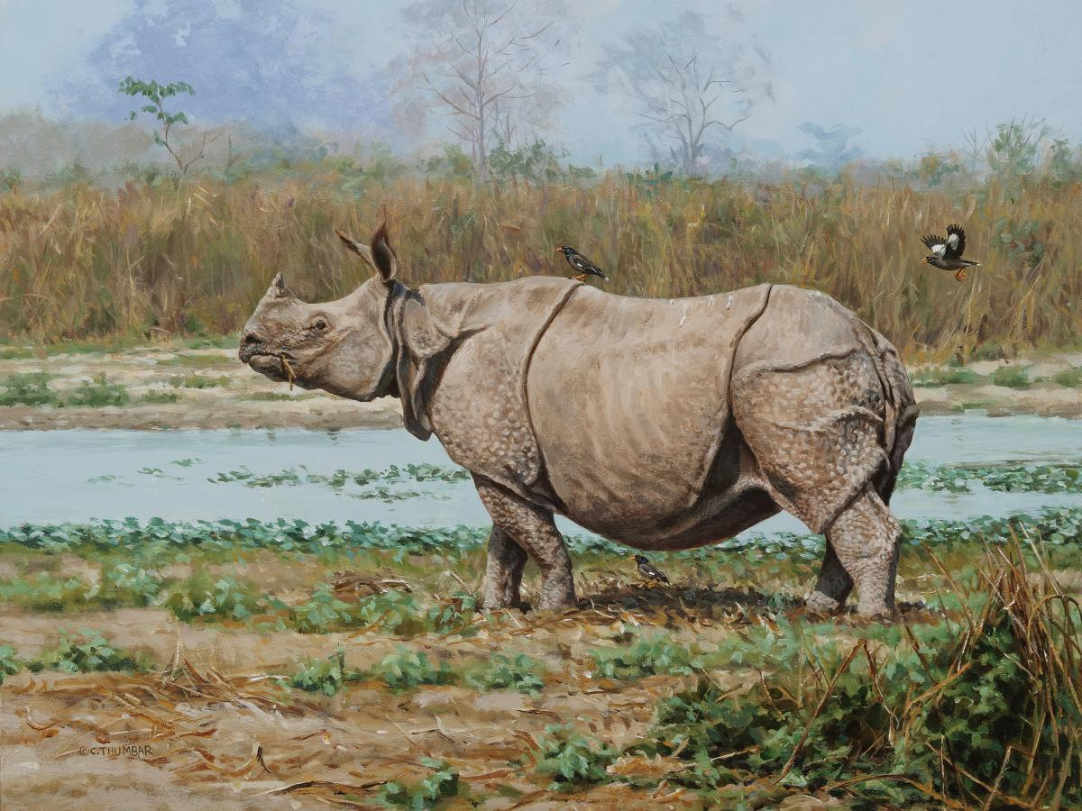 Greater One-horned Rhinoceros  | Wallhanging by Chirag Thumbar | Artists for Conservation 2020