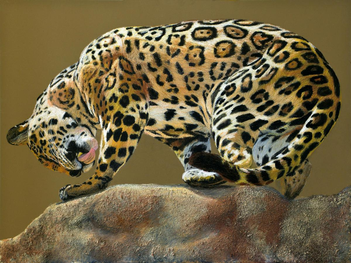 Jaguar with a Twist | Wallhanging by Patsy Lindamood | Artists for Conservation 2020