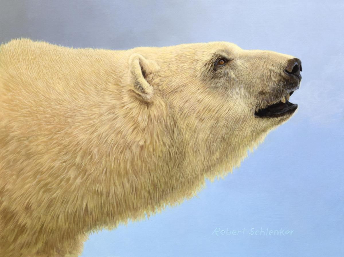 A Polar Experience | Wallhanging by Robert Schlenker | Artists for Conservation 2021