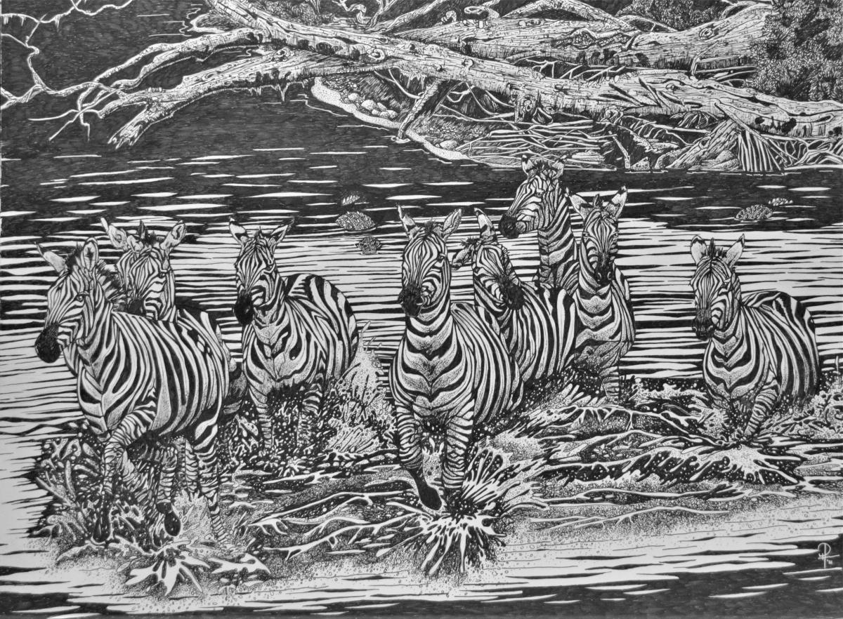 Zebras Crocodile Crossing | Wallhanging by Doug Hiser | Artists for Conservation 2021