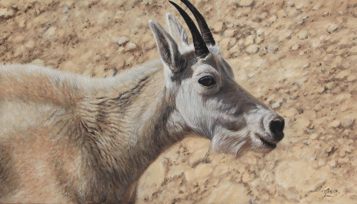Basking In The Light | Wallhanging by Tammy Taylor | Artists for Conservation 2021
