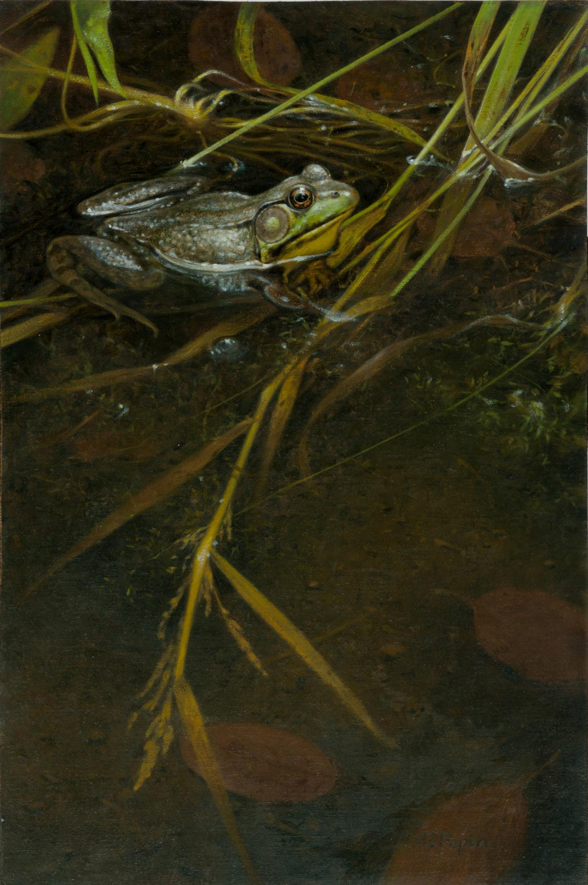 Guard Frog   Wallhanging by Patricia Pepin   Artists for Conservation 2021