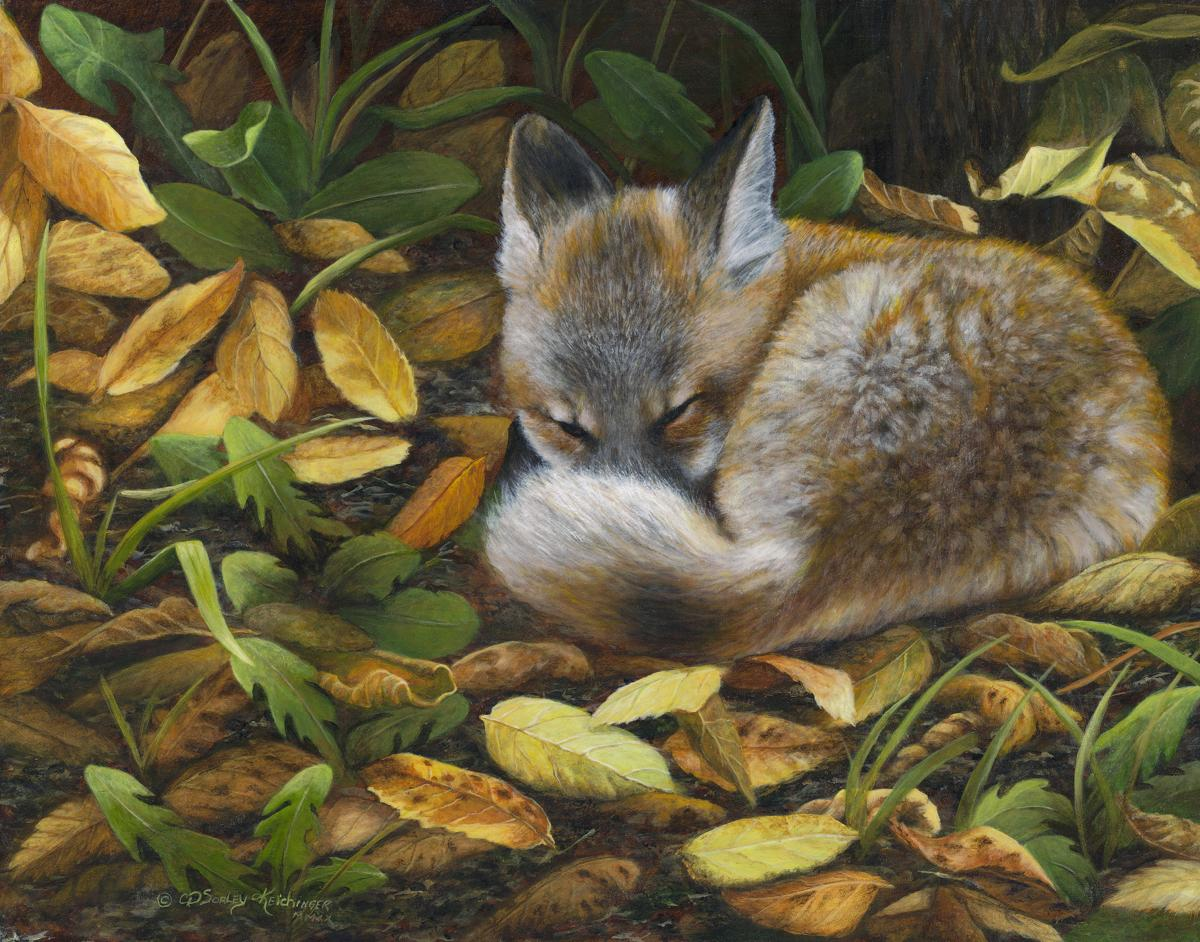 Autumn Snooze   Wallhanging by Cindy Sorley-Keichinger   Artists for Conservation 2021