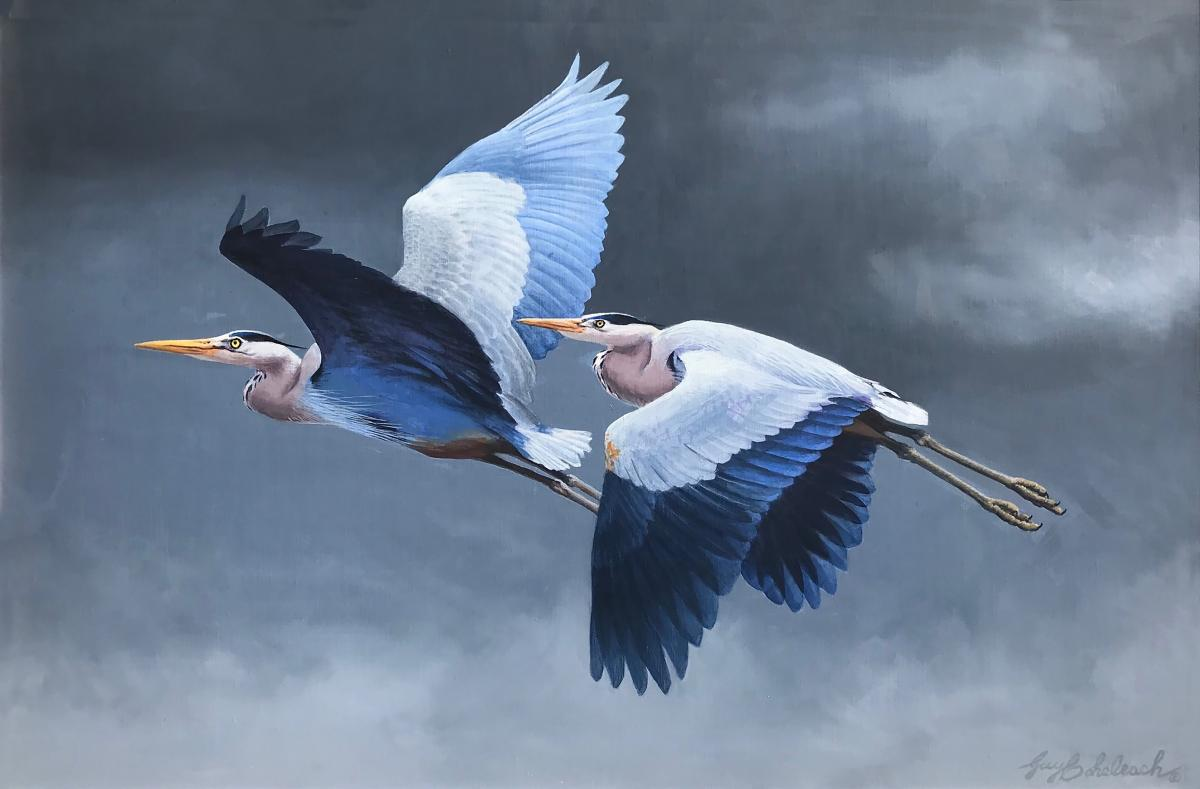 Great Blue Heron Pair | Wallhanging by Guy Coheleach | Artists for Conservation 2021