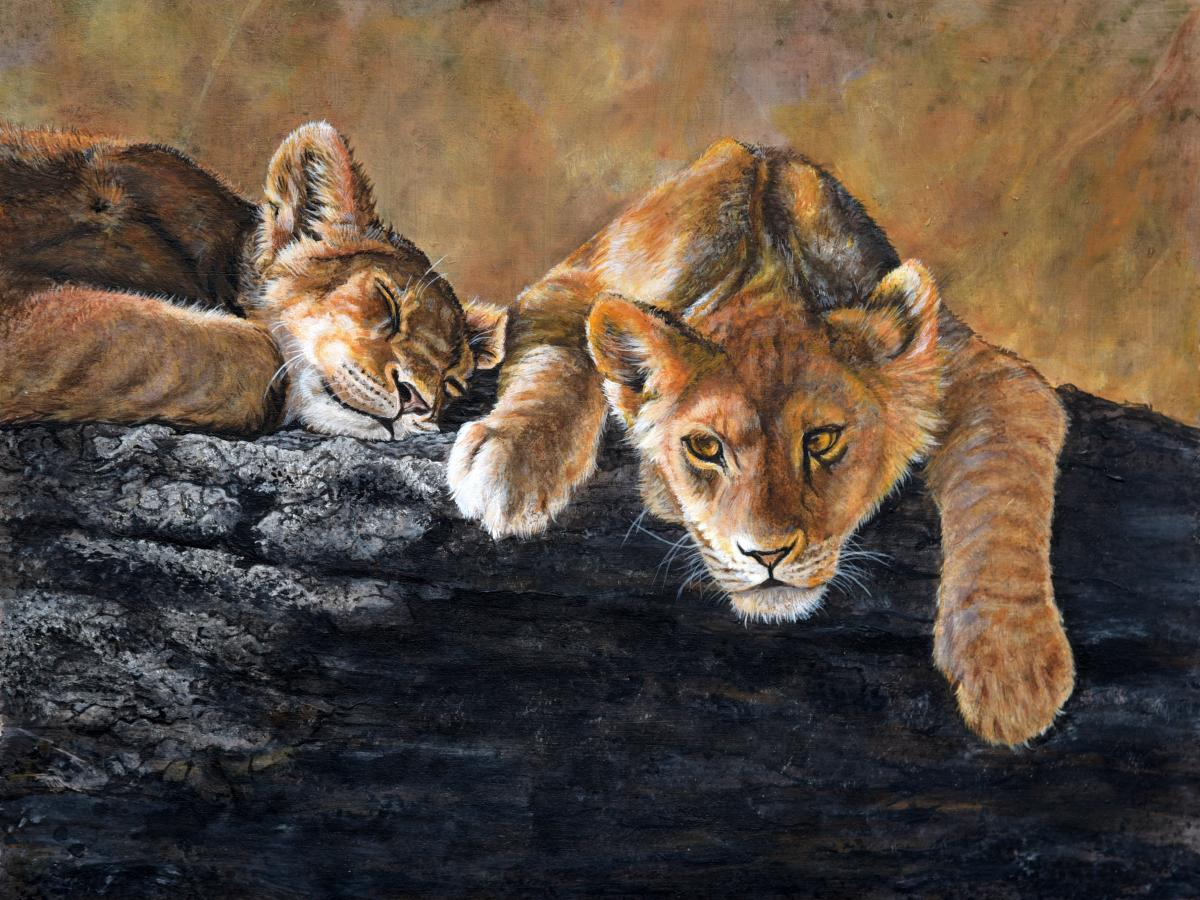 Cat Nap | Wallhanging by Joyce Trygg | Artists for Conservation 2021