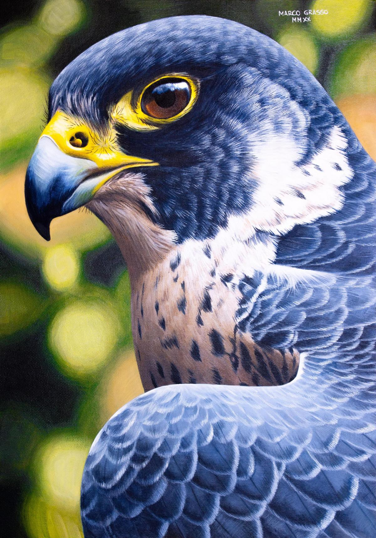 Peregrine Falcon   Wallhanging by Marco Grasso   Artists for Conservation 2021