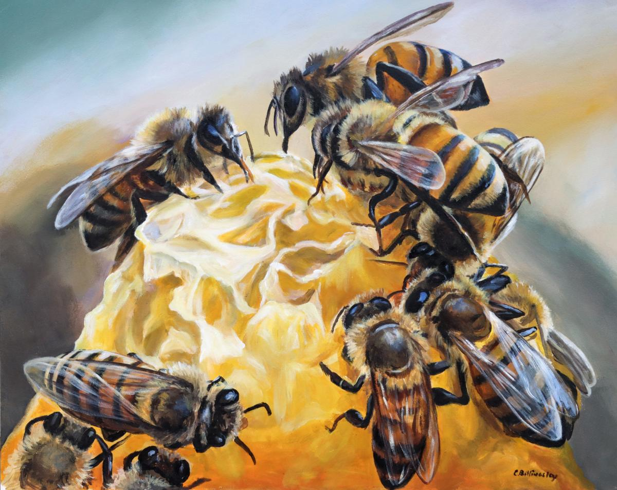 The Honey Of Bees   Wallhanging by Cindy Billingsley   Artists for Conservation 2021