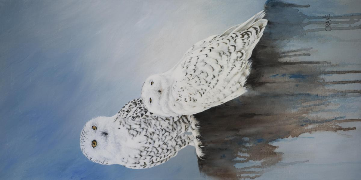 Snowy Owls | Wallhanging by Bobbie Crane | Artists for Conservation 2021