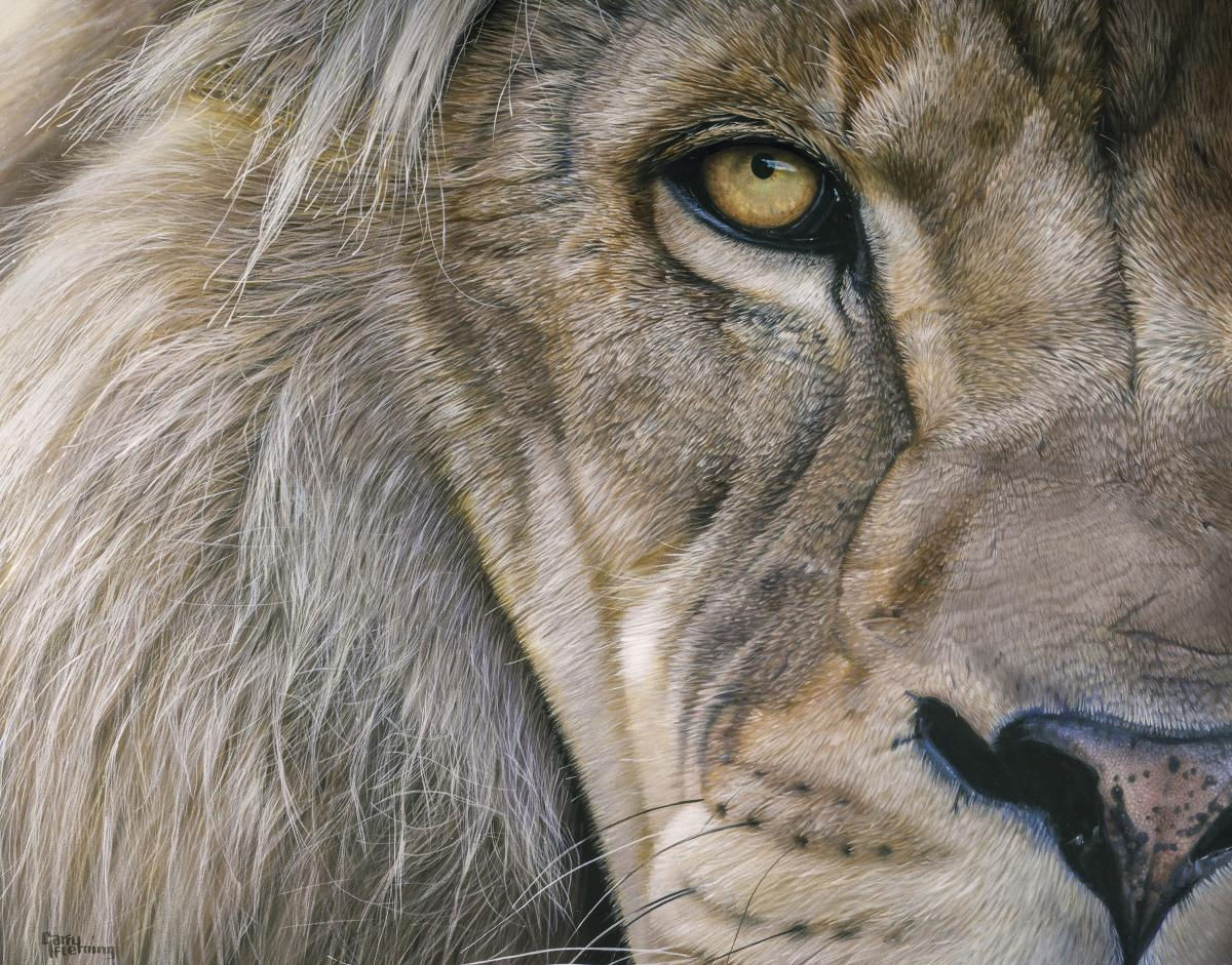 King Kibulu | Wallhanging by Garry Fleming | Artists for Conservation 2021