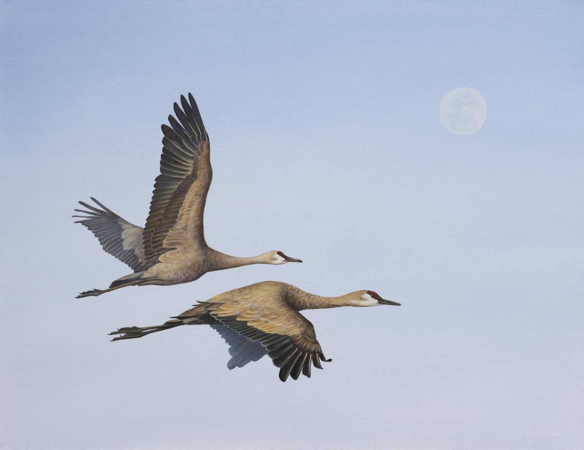 And the Cranes Flew Under the Moon | Wallhanging by Kathy Kleinsteiber | Artists for Conservation 2021