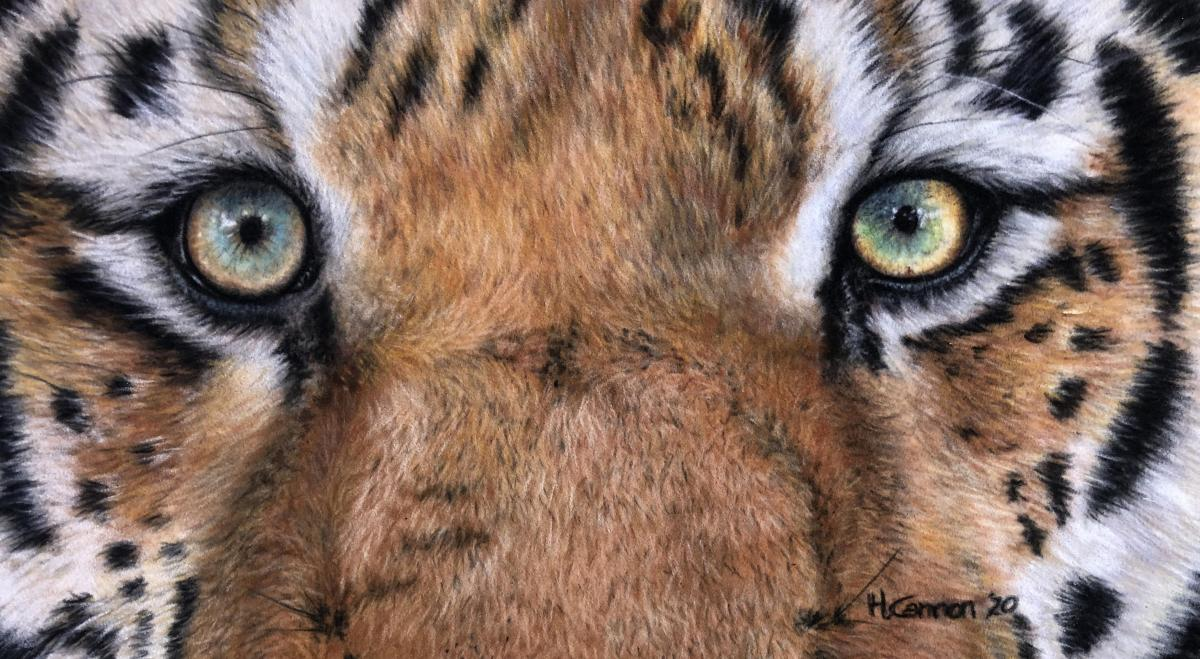 Tiger Eyes | Wallhanging by Holly Cannon | Artists for Conservation 2021