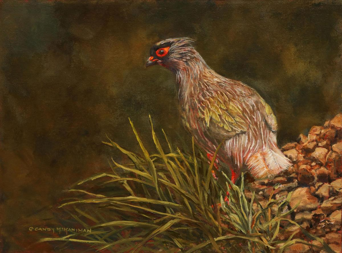 Blood Pheasant   Wallhanging by Candy McManiman   Artists for Conservation 2021