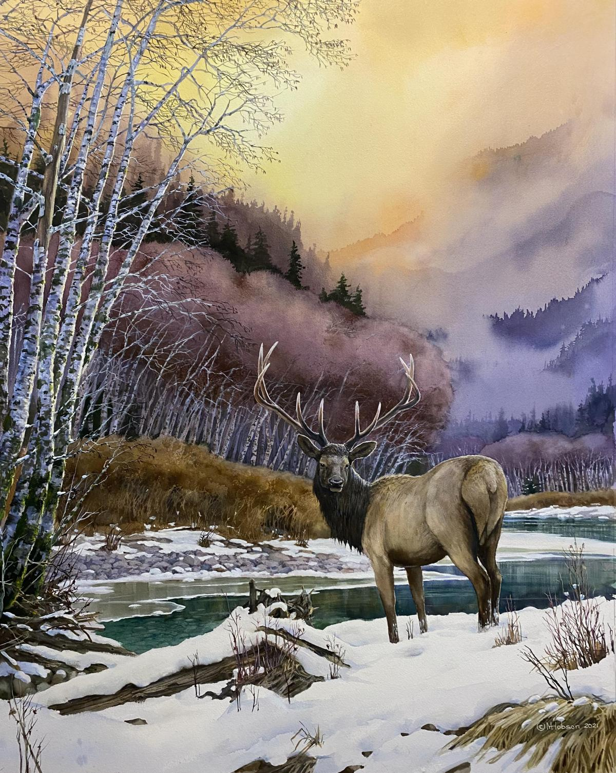 Roosevelt Elk: In His Prime   Wallhanging by Mark Hobson   Artists for Conservation 2021