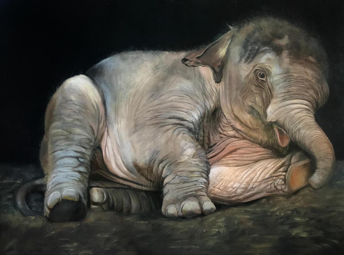 Big Baby   Wallhanging by Denise Monaghan   Artists for Conservation 2021