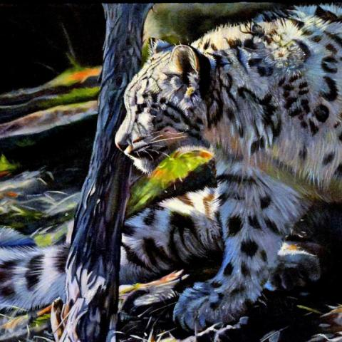 | Wallhanging by Kelly McNeil | Artists for Conservation
