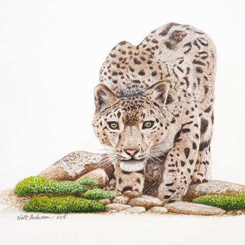 | Wallhanging by Walt Anderson | Artists for Conservation