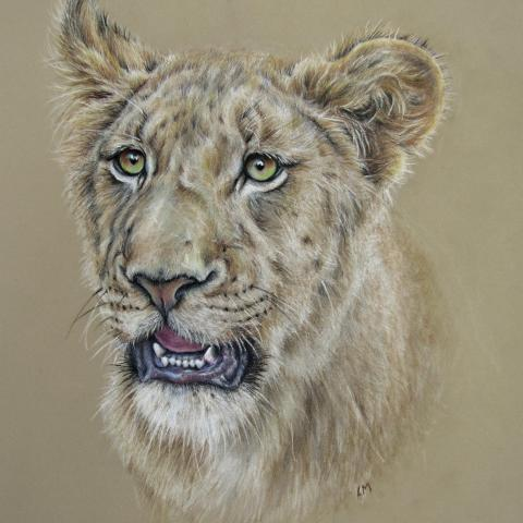 African Lioness   Wallhanging by Linda Martin   Artists for Conservation 2020