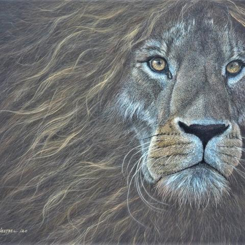 Relentless Fighter   Wallhanging by Cindy Weitzel   Artists for Conservation 2020