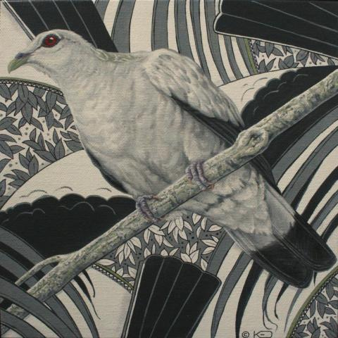 Silvery Pigeon, Grey Wood-pigeon, Silvery Pigeon, Silvery Wood-Pigeon by AFC