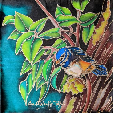 White-bellied Blue Robin by AFC