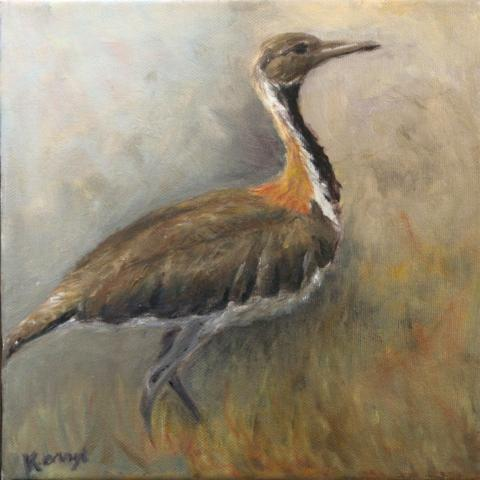 Ludwig's Bustard by AFC