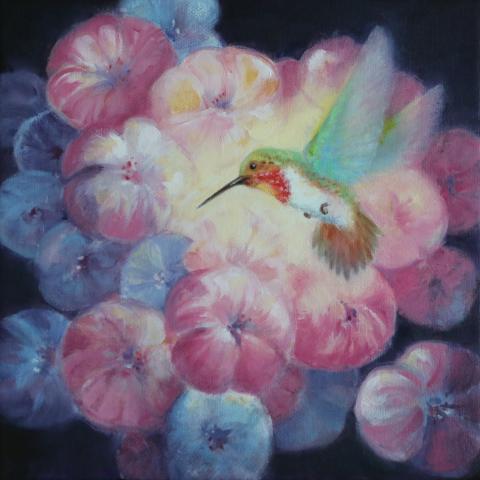 Glow-throated Hummingbird by AFC