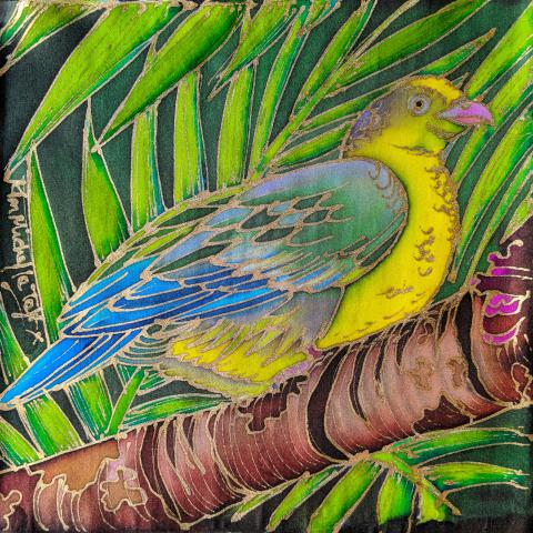 Comoro Green-pigeon by AFC