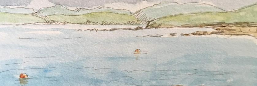 <em>Edit Conservation Project/Cause</em> Hillswick Wildlife Sanctuary Art Competition - Postponed till 2021 | Anne Barron