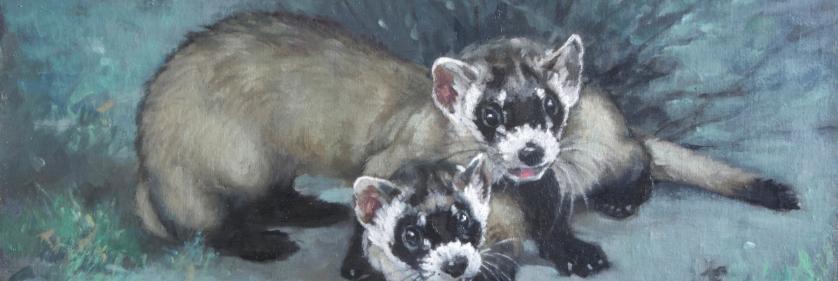 Create Conservation Project/Cause - Savanna Gallery Art Exhibit | Linda Budge