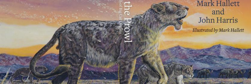 <em>Edit Conservation Project/Cause</em> Big Cat Conservation -    Mark Hallett