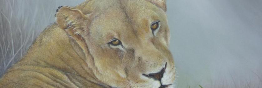 Create Conservation Project/Cause -  | Bobbie Crane