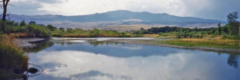 <em>Edit Conservation Project/Cause</em> Reclamation of Montana Ranch Land - Jefferson River, Waterloo, Montana   Kimberly Wurster