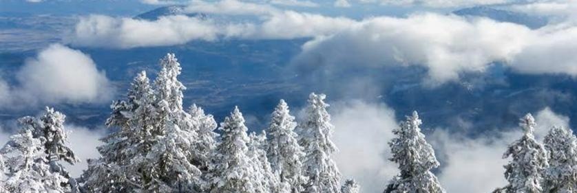 <em>Edit Conservation Project/Cause</em> Southern Oregon Land Conservancy -    Pamela Haunschild