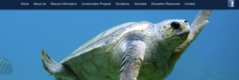 <em>Edit Conservation Project/Cause</em> The Texas Sealife Center - Corpus Christi, Texas   Jeffrey McDaniel