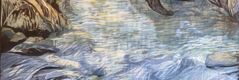 <em>Edit Conservation Project/Cause</em> Where the River Flows -  | Melinda Plank