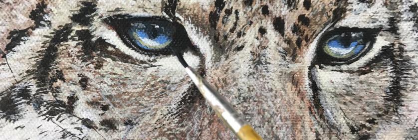 Create Conservation Project/Cause -  | Ajoy Daniel Rai